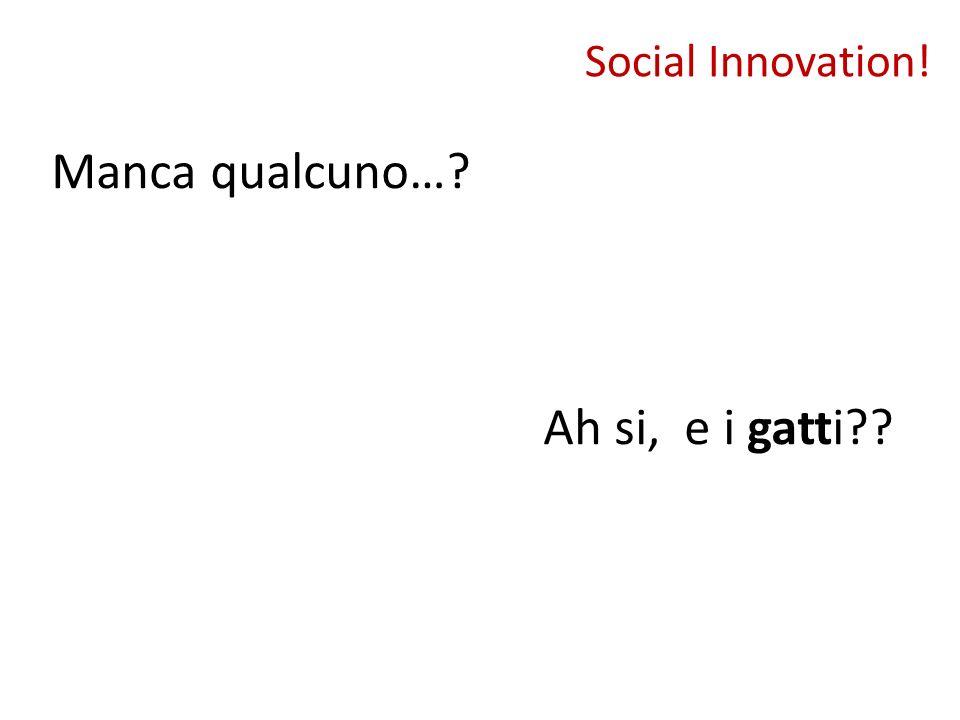 Social Innovation! Manca qualcuno…? Ah si, e i gatti??