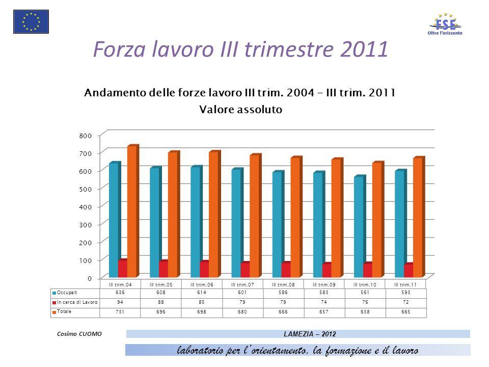 9 Forza lavoro III trimestre 2011 Cosimo CUOMO LAMEZIA – 2012 laboratorio per lorientamento, la formazione e il lavoro