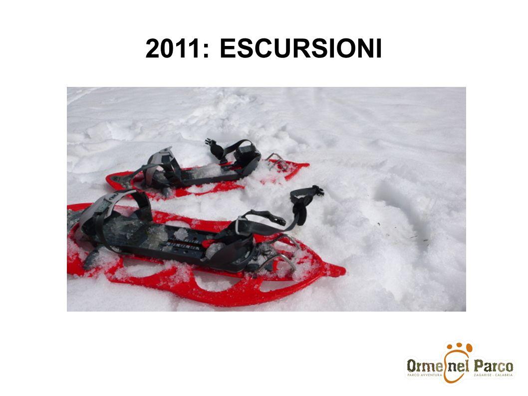 2011: ESCURSIONI