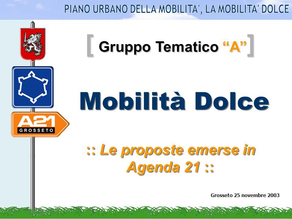[ Gruppo Tematico A ] Mobilità Dolce :: Le proposte emerse in Agenda 21 :: Grosseto 25 novembre 2003