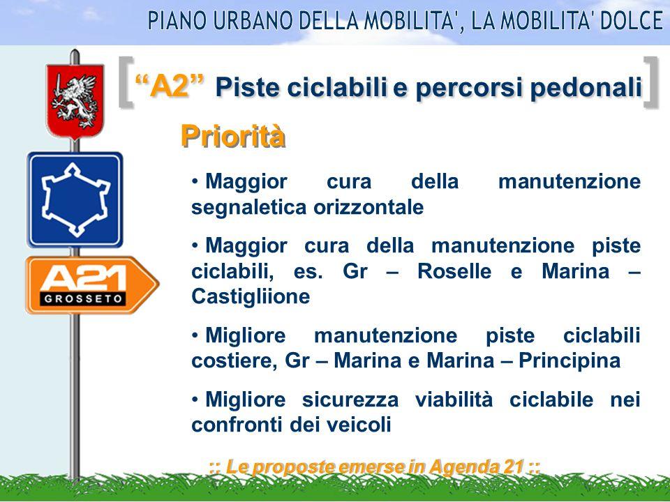 [ A2 Piste ciclabili e percorsi pedonali ] :: Le proposte emerse in Agenda 21 :: Priorità Maggior cura della manutenzione segnaletica orizzontale Magg