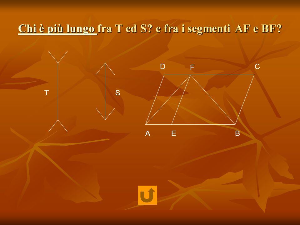 Chi è più lungo Chi è più lungo fra T ed S? e fra i segmenti AF e BF? Chi è più lungo TS AB CD E F