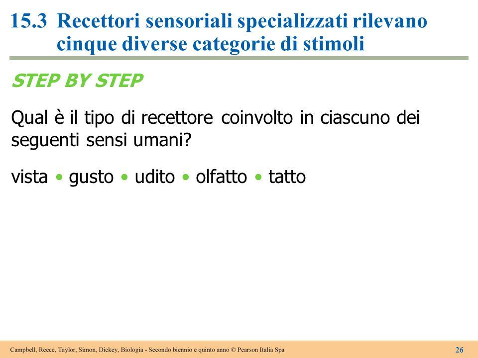 STEP BY STEP Qual è il tipo di recettore coinvolto in ciascuno dei seguenti sensi umani? vista gusto udito olfatto tatto 26 15.3Recettori sensoriali s