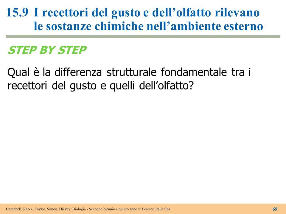 STEP BY STEP Qual è la differenza strutturale fondamentale tra i recettori del gusto e quelli dellolfatto? 69 15.9I recettori del gusto e dellolfatto