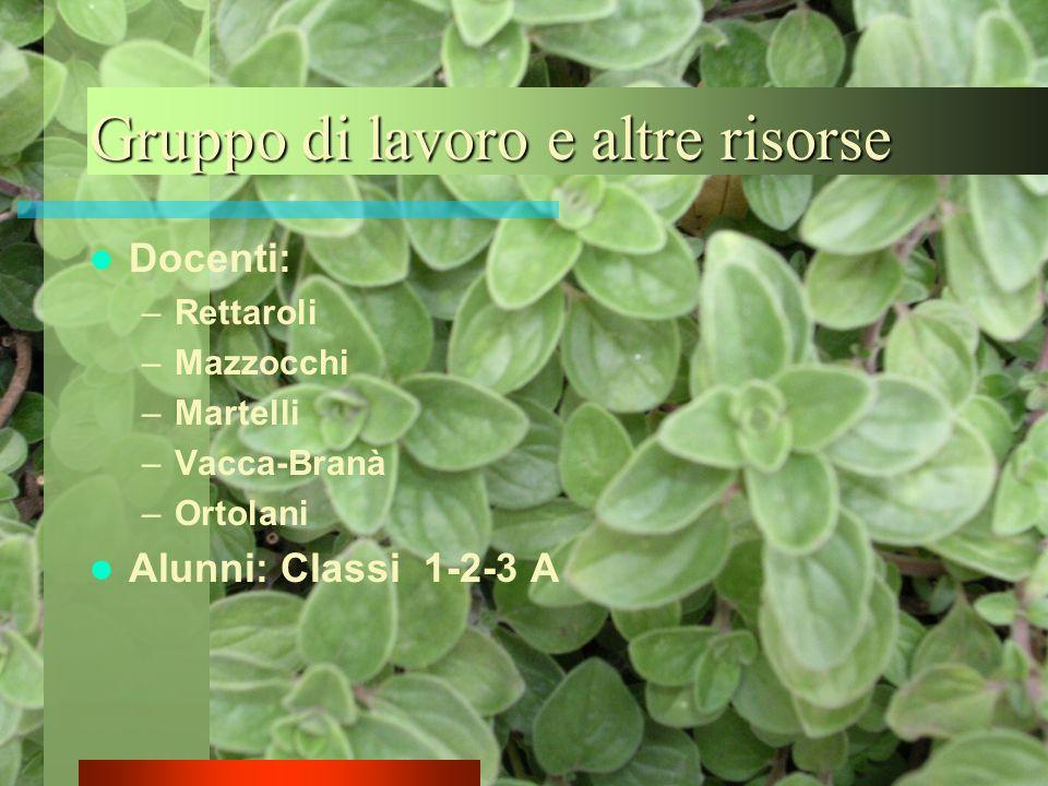Gruppo di lavoro e altre risorse Docenti: –Rettaroli –Mazzocchi –Martelli –Vacca-Branà –Ortolani Alunni: Classi 1-2-3 A