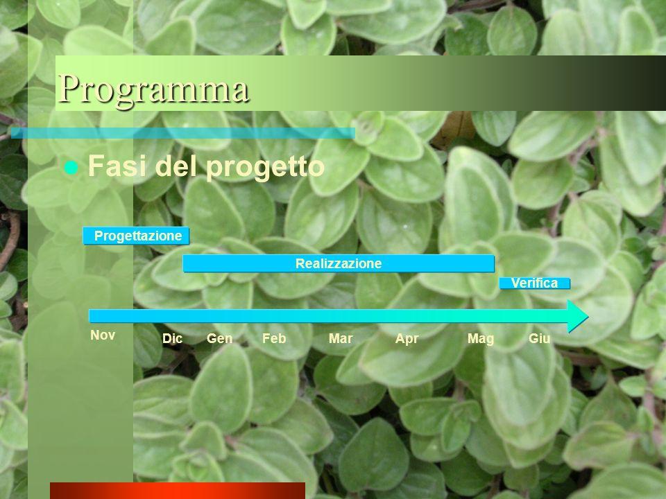 Fasi del progetto Programma Progettazione Realizzazione Verifica Nov GenFebMarAprMagGiuDic