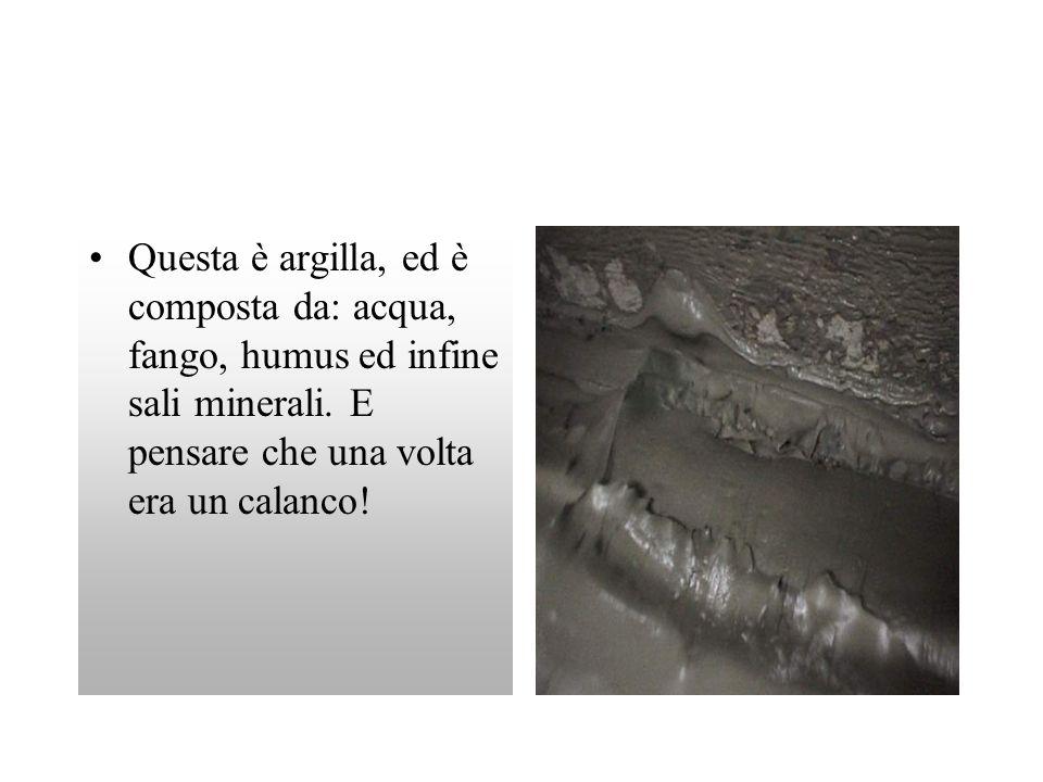 Questa è argilla, ed è composta da: acqua, fango, humus ed infine sali minerali. E pensare che una volta era un calanco!