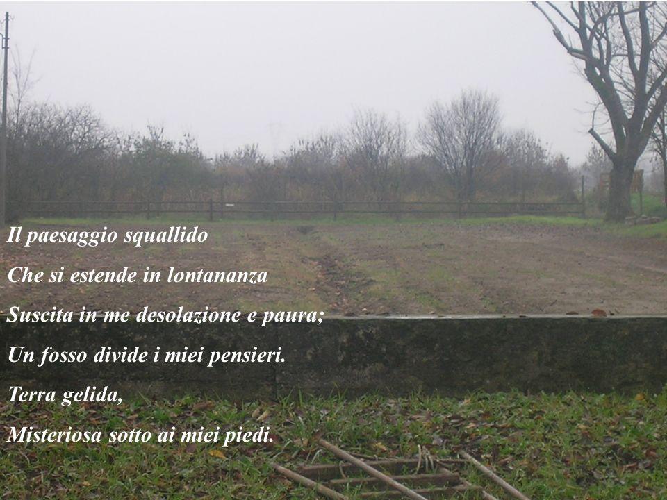 Il paesaggio squallido Che si estende in lontananza Suscita in me desolazione e paura; Un fosso divide i miei pensieri.