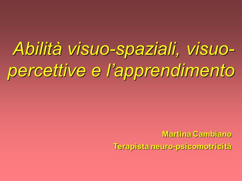 Abilità visuo-spaziali, visuo- percettive e lapprendimento Abilità visuo-spaziali, visuo- percettive e lapprendimento Martina Cambiano Martina Cambian