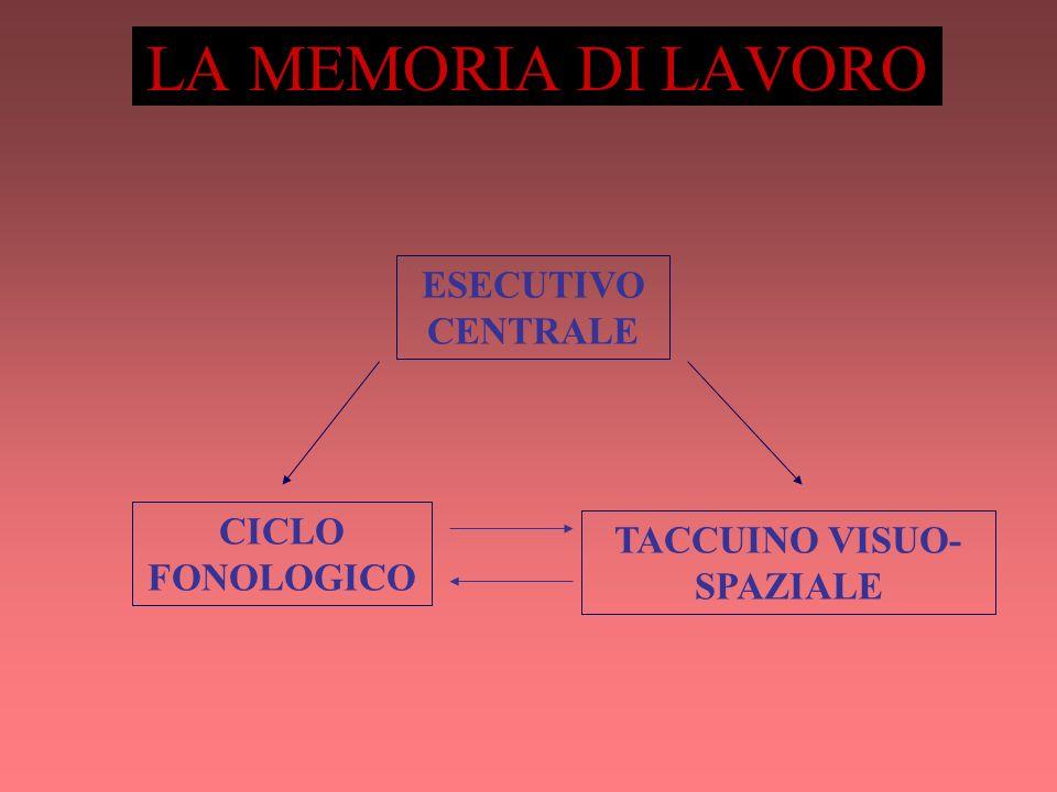 LA MEMORIA DI LAVORO ESECUTIVO CENTRALE CICLO FONOLOGICO TACCUINO VISUO- SPAZIALE