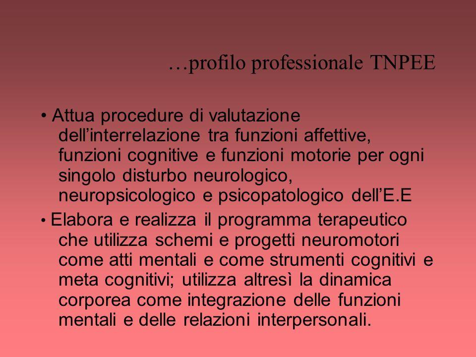 …profilo professionale TNPEE Attua procedure di valutazione dellinterrelazione tra funzioni affettive, funzioni cognitive e funzioni motorie per ogni