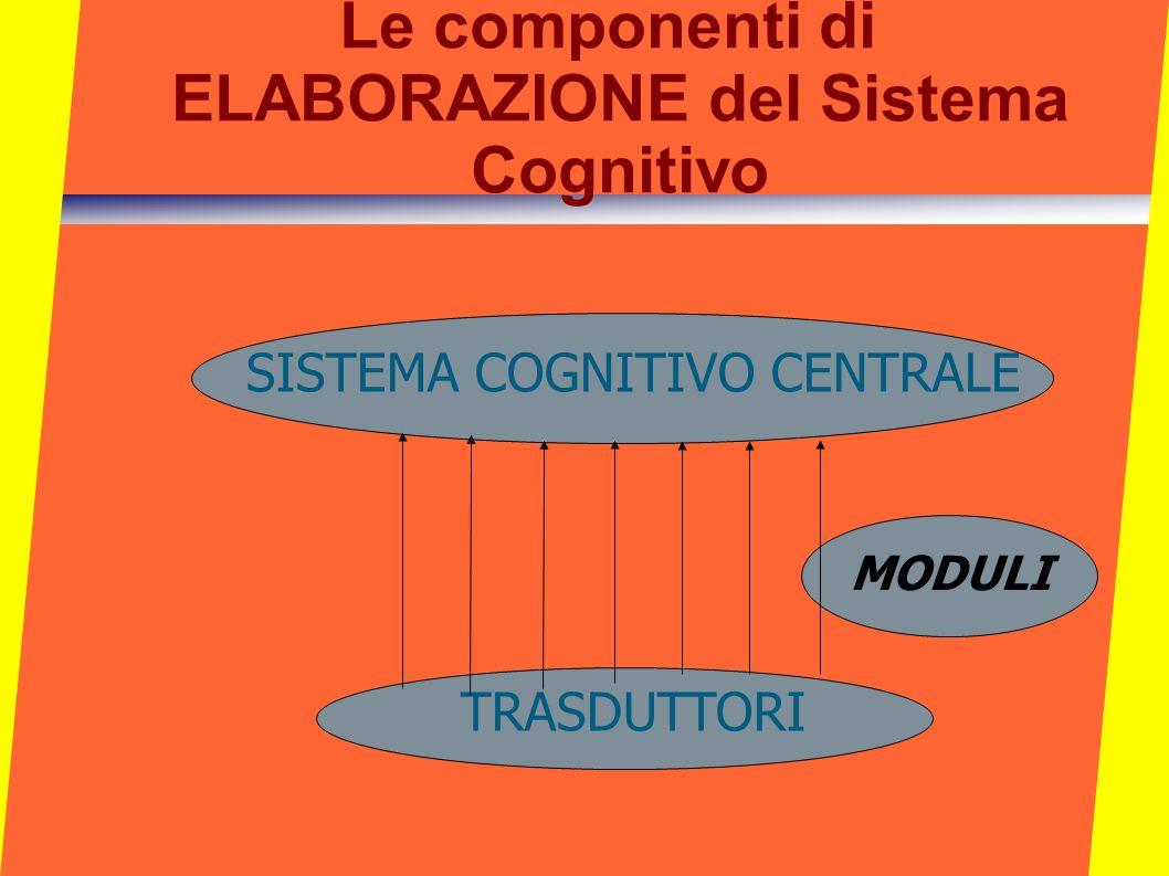 Le componenti di ELABORAZIONE del Sistema Cognitivo SISTEMA COGNITIVO CENTRALE TRASDUTTORI MODULI