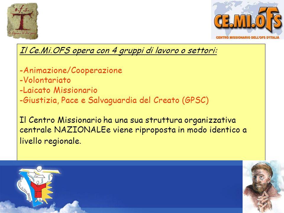 Il Ce.Mi.OFS opera con 4 gruppi di lavoro o settori: -Animazione/Cooperazione -Volontariato -Laicato Missionario -Giustizia, Pace e Salvaguardia del C