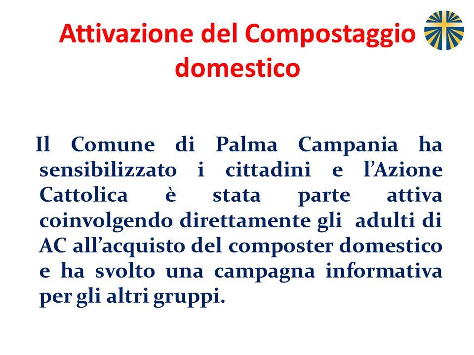 Attivazione del Compostaggio domestico Il Comune di Palma Campania ha sensibilizzato i cittadini e lAzione Cattolica è stata parte attiva coinvolgendo