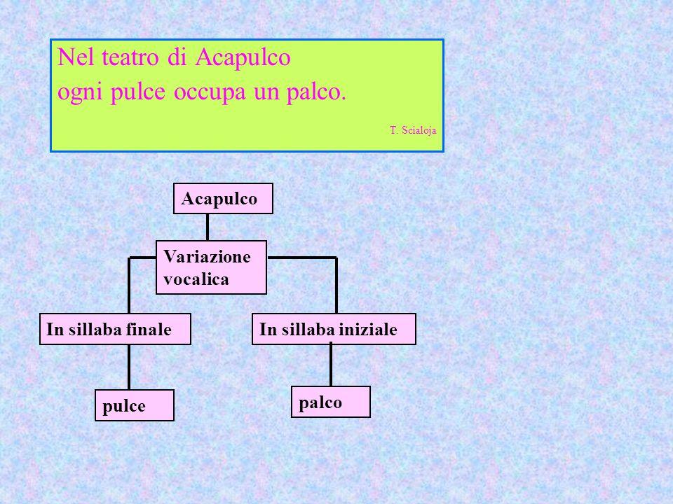 Lidentità delle sole consonanti, a partire dalla vocale accentata, tra due o più parole è detta consonanza Nel teatro di AcapuLCO ogni puLCE occupa un paLCO.