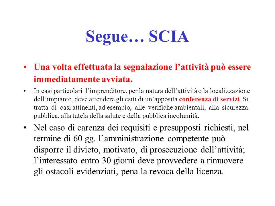Segue… SCIA Una volta effettuata la segnalazione lattività può essere immediatamente avviata.