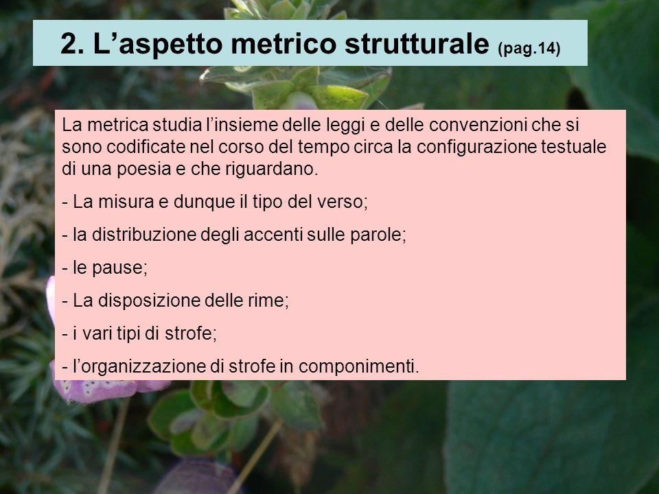 2. Laspetto metrico strutturale (pag.14) La metrica studia linsieme delle leggi e delle convenzioni che si sono codificate nel corso del tempo circa l