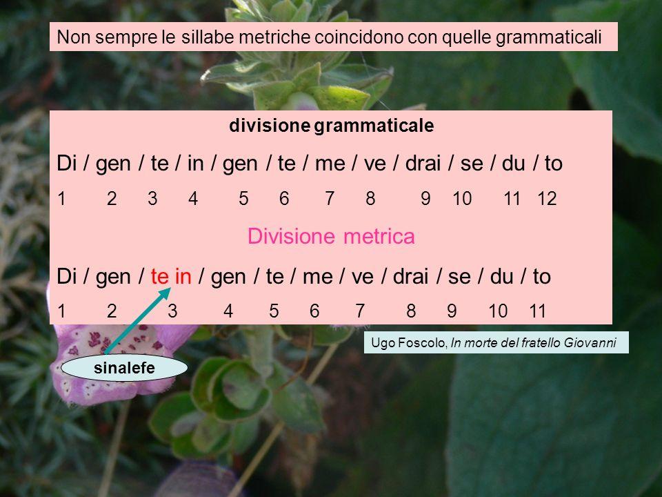 Non sempre le sillabe metriche coincidono con quelle grammaticali divisione grammaticale Di / gen / te / in / gen / te / me / ve / drai / se / du / to