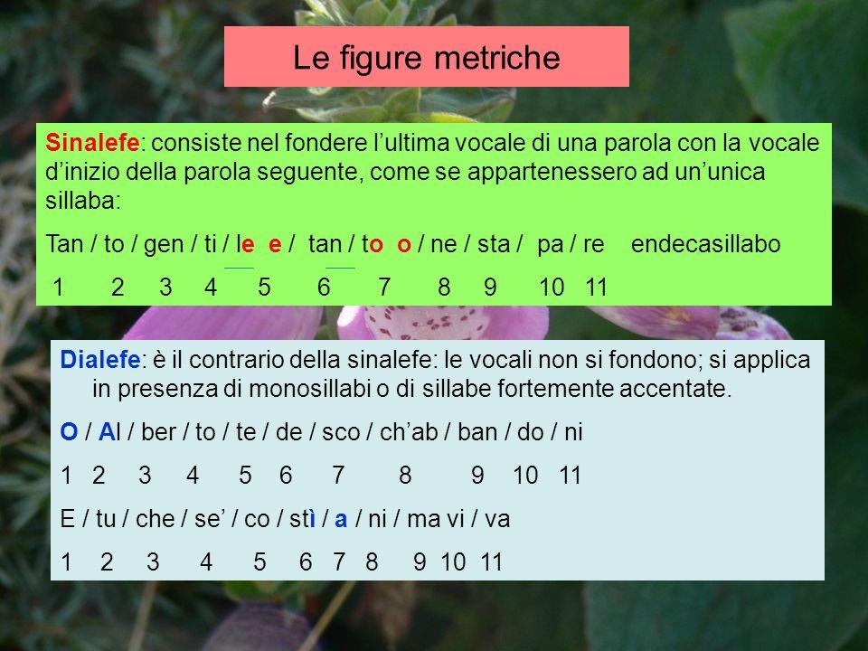 Le figure metriche Sinalefe: consiste nel fondere lultima vocale di una parola con la vocale dinizio della parola seguente, come se appartenessero ad