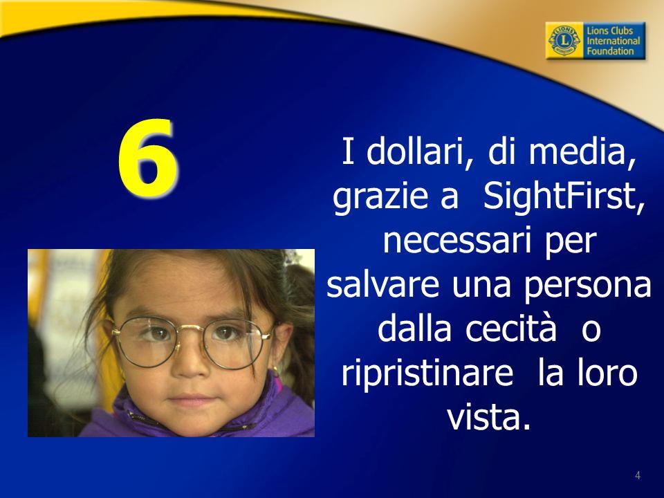 4 I dollari, di media, grazie a SightFirst, necessari per salvare una persona dalla cecità o ripristinare la loro vista. 6
