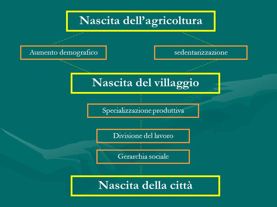 Nascita dellagricoltura Nascita del villaggio Nascita della città Aumento demograficosedentarizzazione Specializzazione produttiva Divisione del lavor