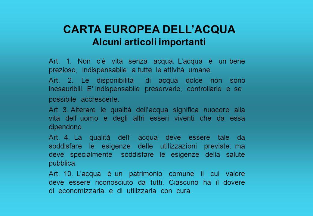 CARTA EUROPEA DELLACQUA Alcuni articoli importanti Art. 1. Non cè vita senza acqua. Lacqua è un bene prezioso, indispensabile a tutte le attività uman