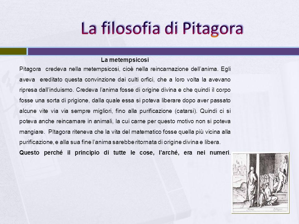 La metempsicosi Pitagora credeva nella metempsicosi, cioè nella reincarnazione dellanima. Egli aveva ereditato questa convinzione dai culti orfici, ch