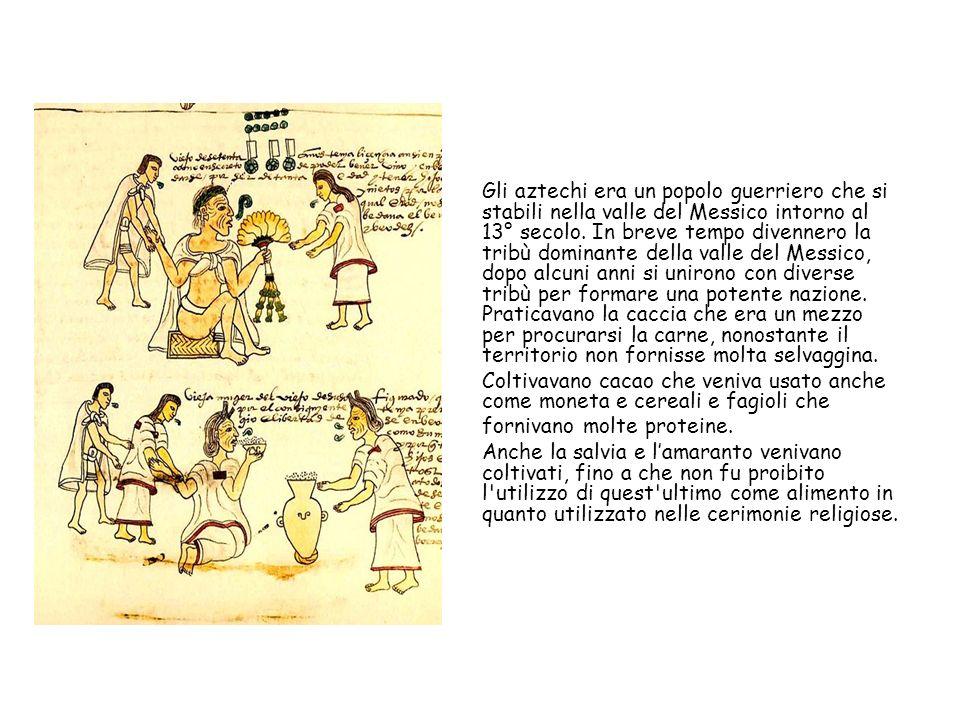 Gli aztechi era un popolo guerriero che si stabili nella valle del Messico intorno al 13° secolo.