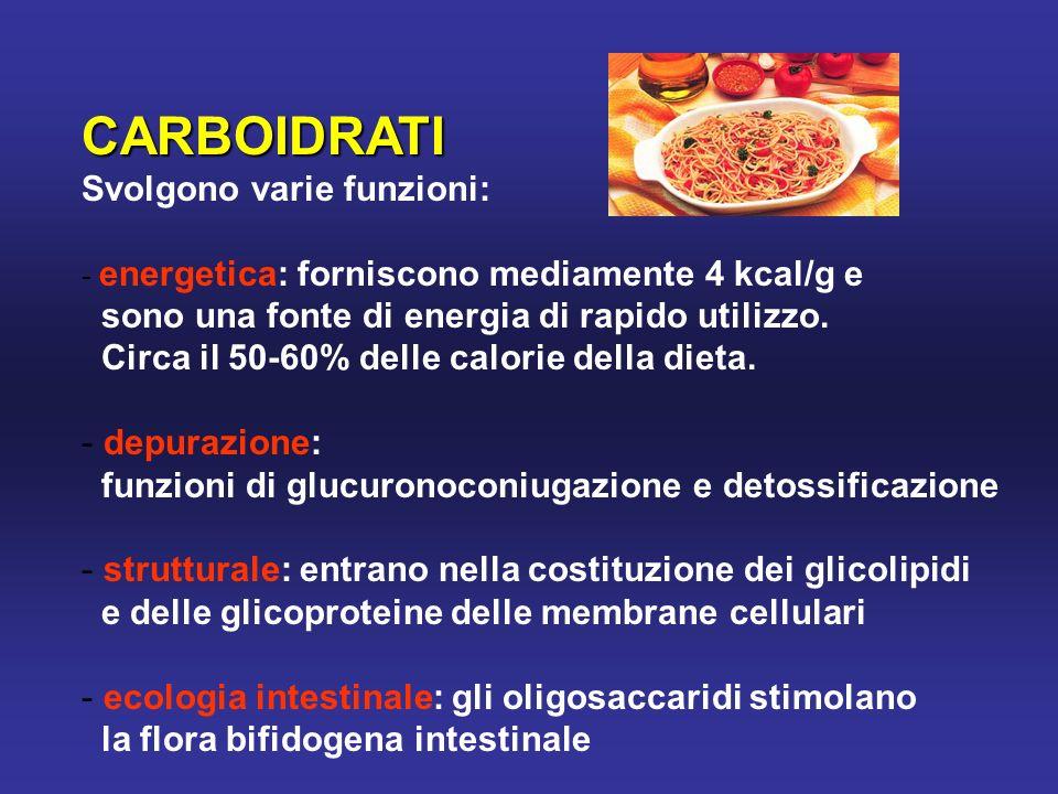 Il PESCE contiene proteine di elevato valore biologico, gli acidi grassi polinsaturi , essenziali La famiglia degli acidi grassi omega-3 è ritenuta benefica nella prevenzione delle malattie cardiocircolatorie.