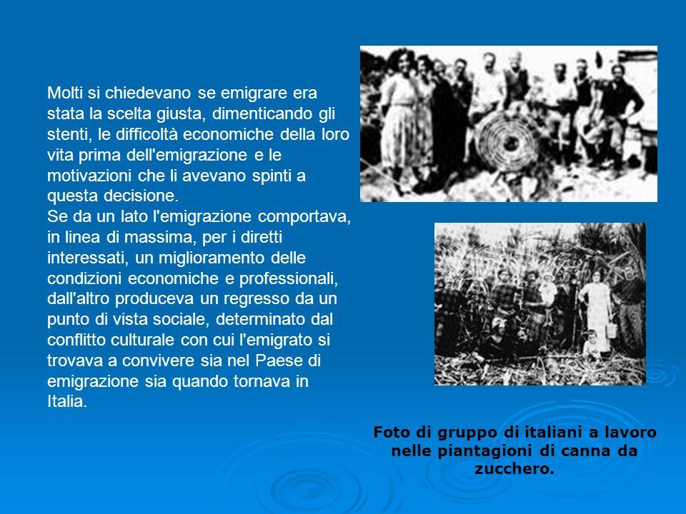 Foto di gruppo di italiani a lavoro nelle piantagioni di canna da zucchero. Molti si chiedevano se emigrare era stata la scelta giusta, dimenticando g