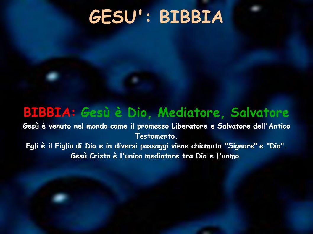 GESU': BIBBIA BIBBIA: Gesù è Dio, Mediatore, Salvatore Gesù è venuto nel mondo come il promesso Liberatore e Salvatore dell'Antico Testamento. Egli è