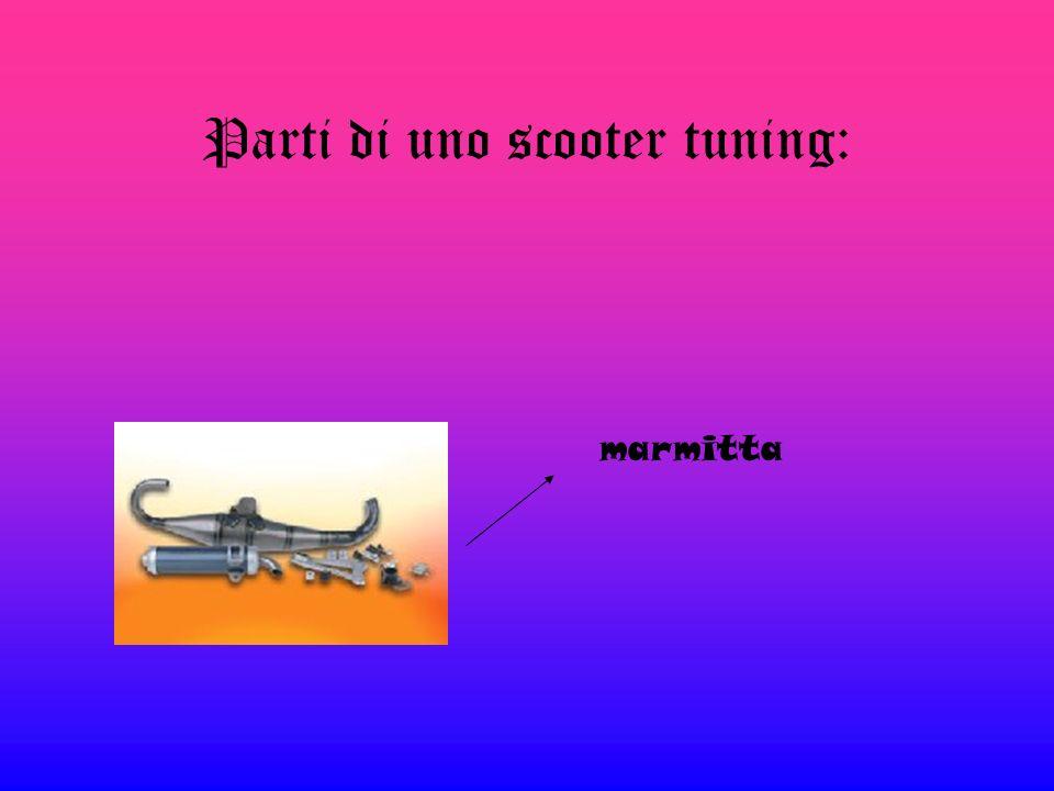 Parti di uno scooter tuning: Filtro malossi