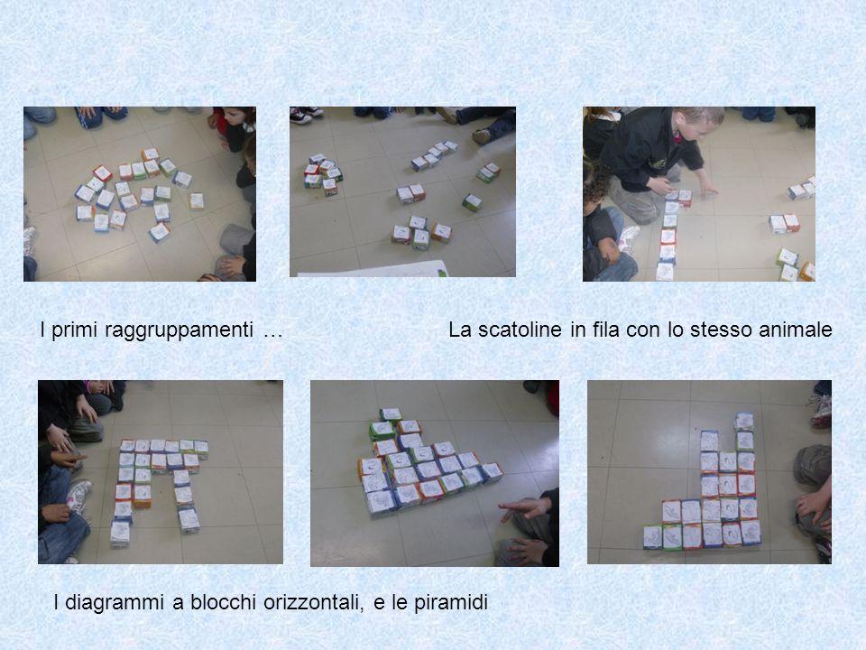 I primi raggruppamenti …La scatoline in fila con lo stesso animale I diagrammi a blocchi orizzontali, e le piramidi