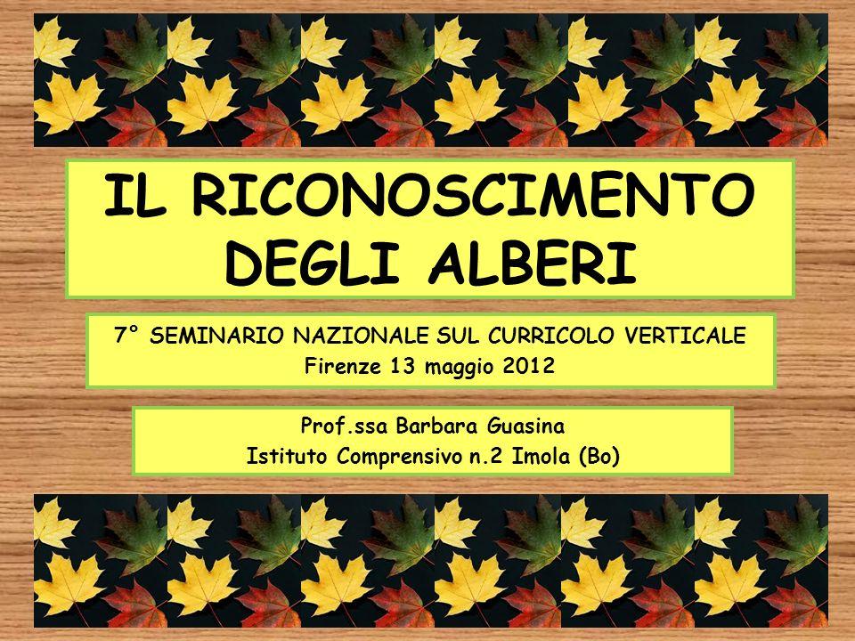 IL RICONOSCIMENTO DEGLI ALBERI 7° SEMINARIO NAZIONALE SUL CURRICOLO VERTICALE Firenze 13 maggio 2012 Prof.ssa Barbara Guasina Istituto Comprensivo n.2