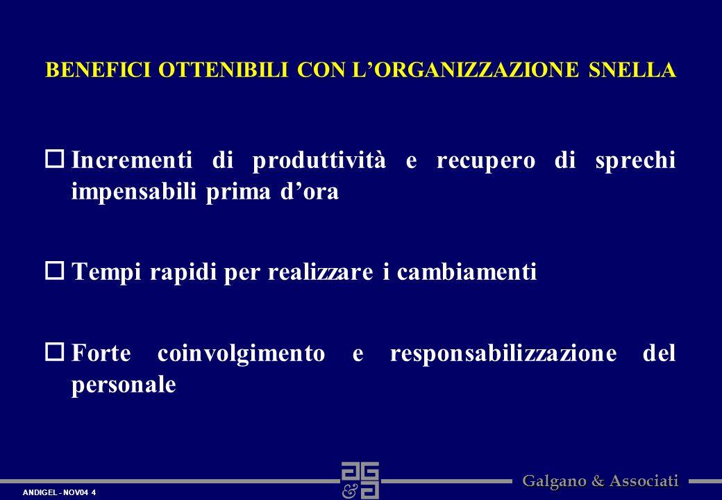 ANDIGEL - NOV04 4 Galgano & Associati BENEFICI OTTENIBILI CON LORGANIZZAZIONE SNELLA oIncrementi di produttività e recupero di sprechi impensabili pri