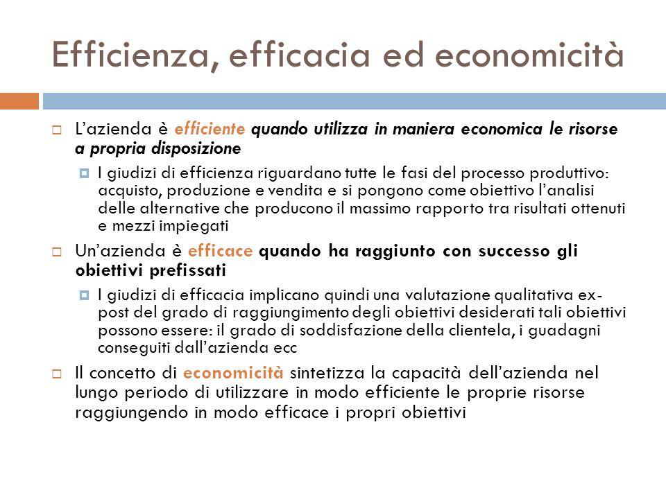 Efficienza, efficacia ed economicità Lazienda è efficiente quando utilizza in maniera economica le risorse a propria disposizione I giudizi di efficie