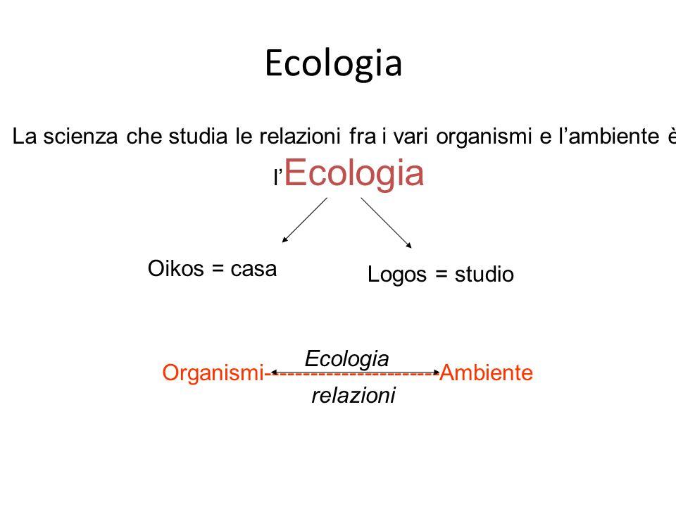 Struttura di un Ecosistema ECOSISTEMA 4 Componente Biotica Componente Abiotica