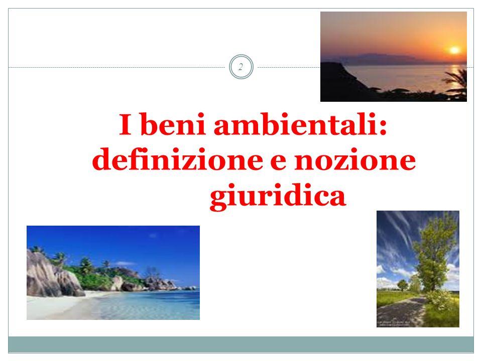 13 Sentenza 232/2005 Legge Regione Veneto n.