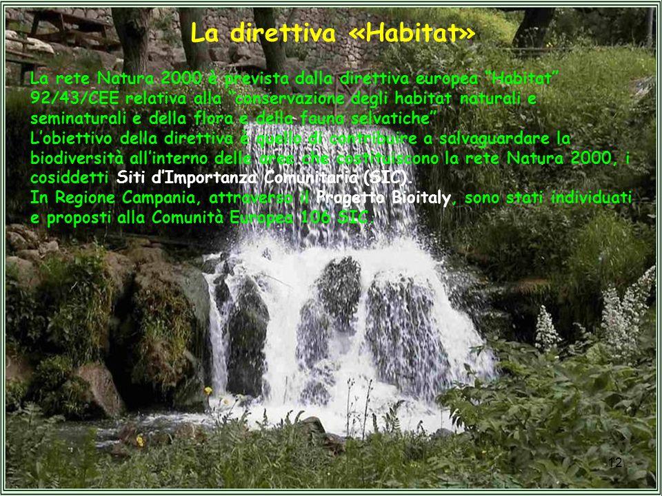 12 La direttiva «Habitat» La rete Natura 2000 è prevista dalla direttiva europea Habitat 92/43/CEE relativa alla conservazione degli habitat naturali