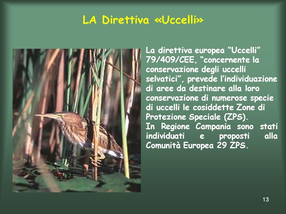 13 LA Direttiva «Uccelli» La direttiva europea Uccelli 79/409/CEE, concernente la conservazione degli uccelli selvatici, prevede lindividuazione di ar