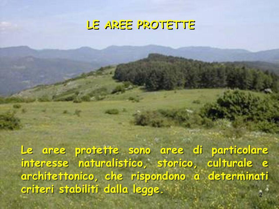 2 Le aree protette sono aree di particolare interesse naturalistico, storico, culturale e architettonico, che rispondono a determinati criteri stabili