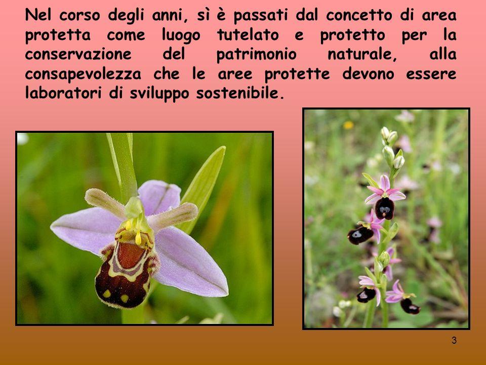 44 Le Aree Protette della Campania