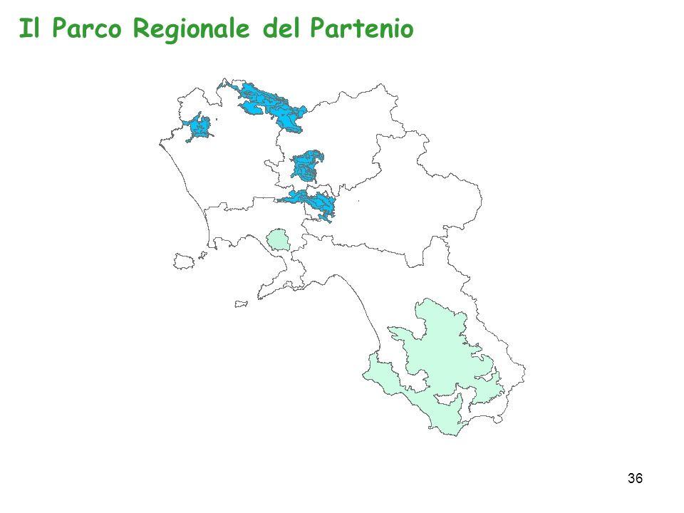 36 Il Parco Regionale del Partenio
