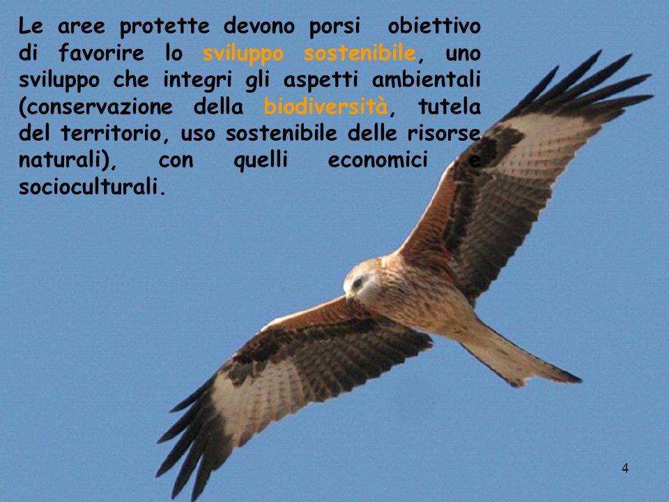 15 La Giunta regionale della Campania con la deliberazione n.