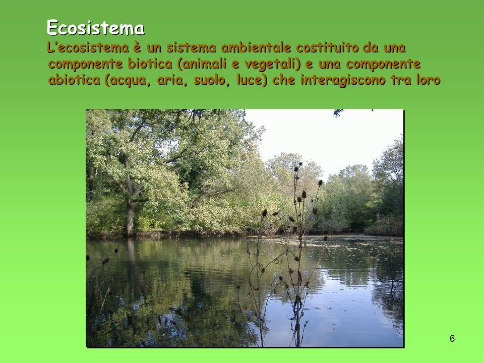 6 Ecosistema Lecosistema è un sistema ambientale costituito da una componente biotica (animali e vegetali) e una componente abiotica (acqua, aria, suo