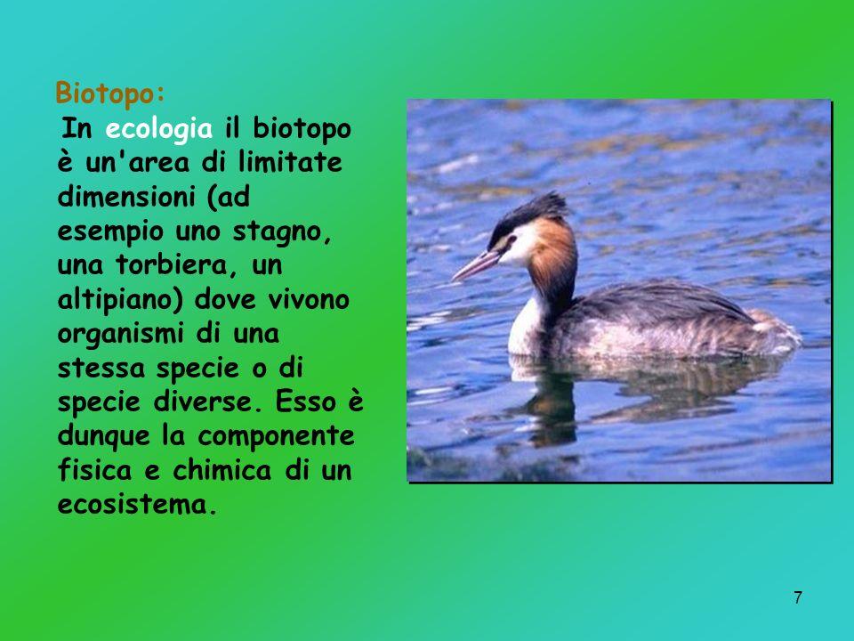 7 Biotopo: In ecologia il biotopo è un'area di limitate dimensioni (ad esempio uno stagno, una torbiera, un altipiano) dove vivono organismi di una st