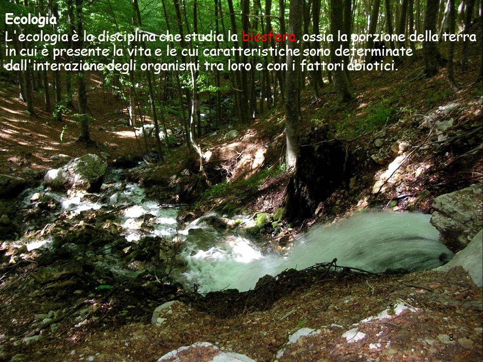 8 Ecologia L'ecologia è la disciplina che studia la biosfera, ossia la porzione della terra in cui è presente la vita e le cui caratteristiche sono de