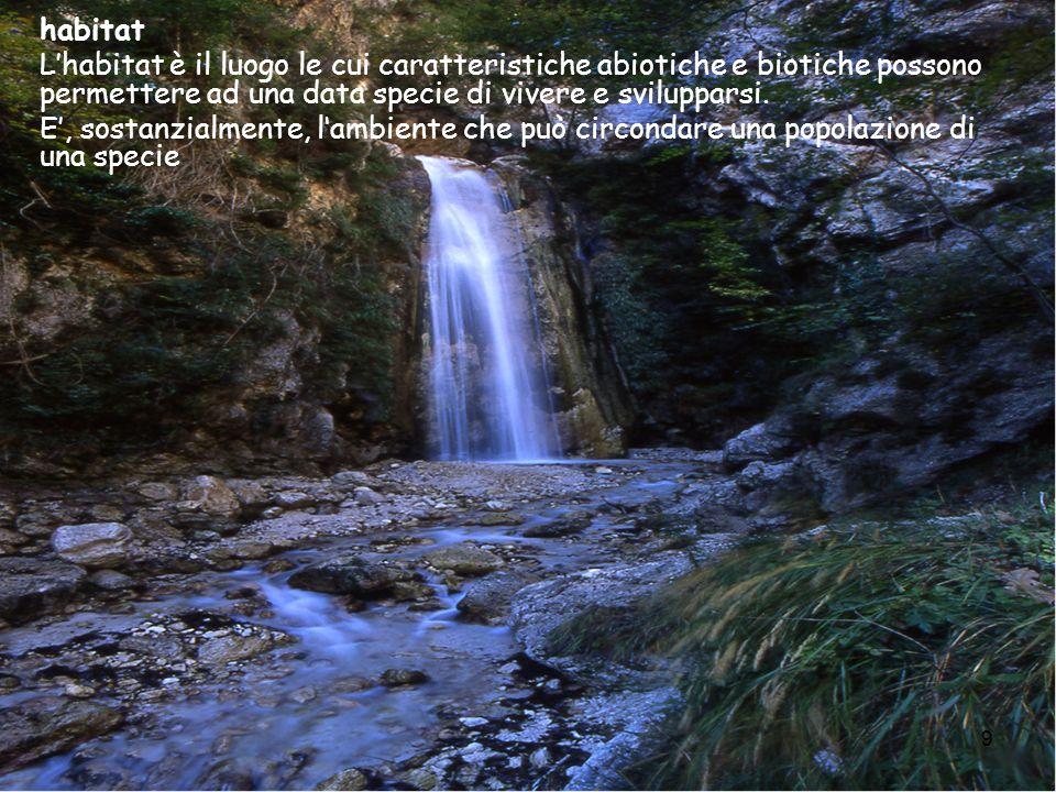 9 habitat Lhabitat è il luogo le cui caratteristiche abiotiche e biotiche possono permettere ad una data specie di vivere e svilupparsi. E, sostanzial