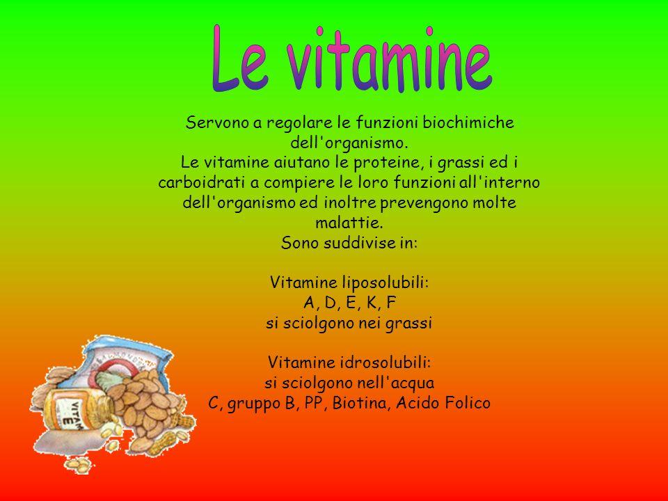 Servono a regolare le funzioni biochimiche dell'organismo. Le vitamine aiutano le proteine, i grassi ed i carboidrati a compiere le loro funzioni all'