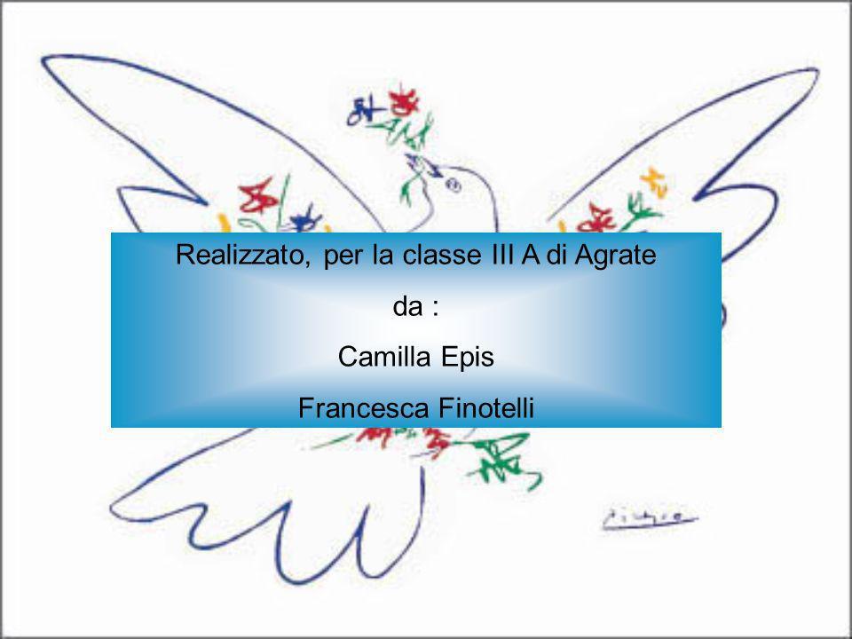Realizzato, per la classe III A di Agrate da : Camilla Epis Francesca Finotelli